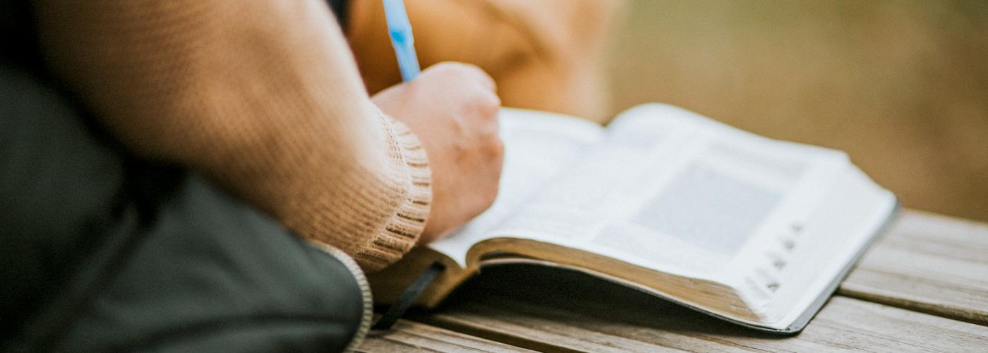 Sunday Discipleship